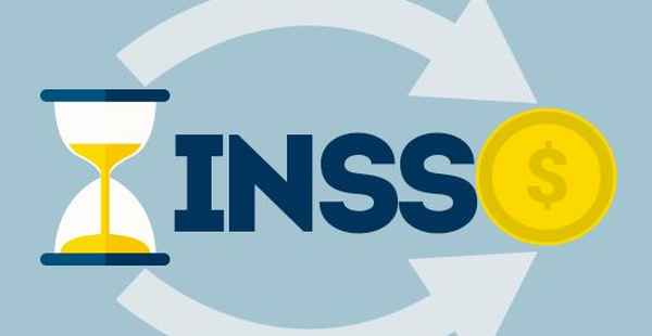 CND INSS 2020